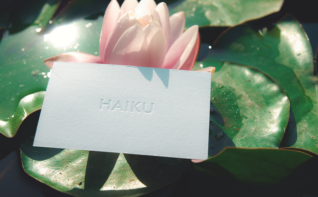 Haiku Branding